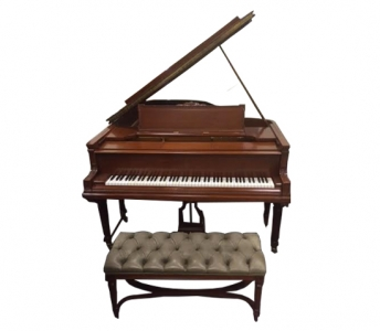 Steinway Art Case Grand with PianoDisc System